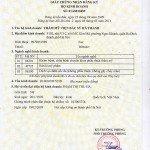 Giấy đăng ký kinh doanh Thẩm mỹ viện bác sĩ Hà Thanh